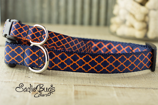 Blue and Orange Dog Collar Quatrefoil