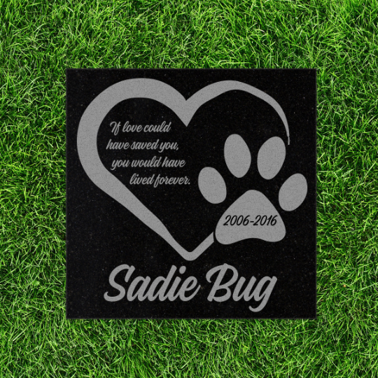 Pet Memorial Stone - If Love could have saved you