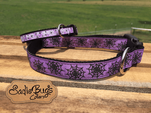 Spider web dog collar - Halloween