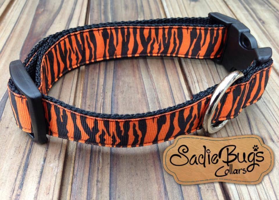 Orange and Blue Tiger stripe 3/4 width dog collar - War Eagle