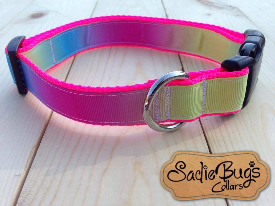 Ombre dog collar brightly colored