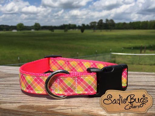 Striped dog collar, modern dog collar, colorful dog collar