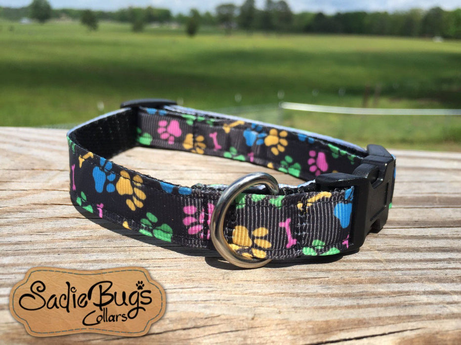 Paw print dog collar, colorful dog collar 5/8 & 3/4 width