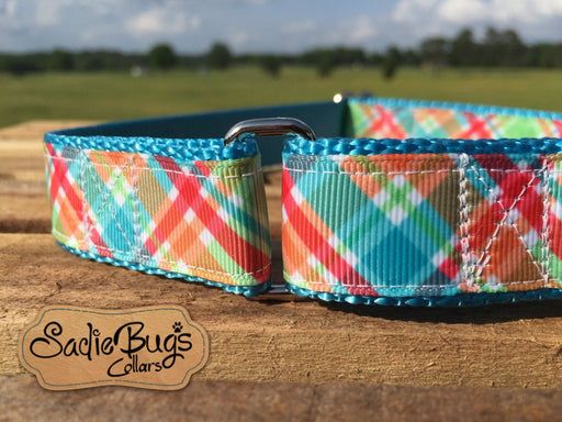"Plaid Martingale Collar Dog Collar 1"" Adjustable dog collar"