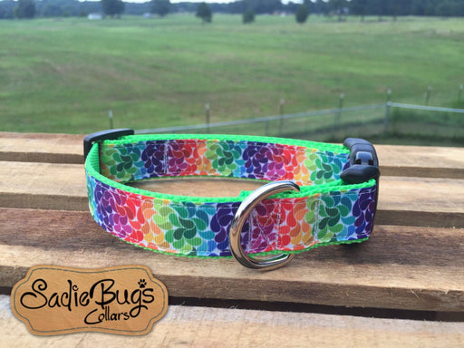 Colorburst dog collar