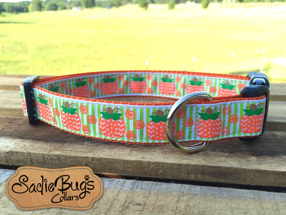 Pumpkin dog collar - Halloween Chevron print