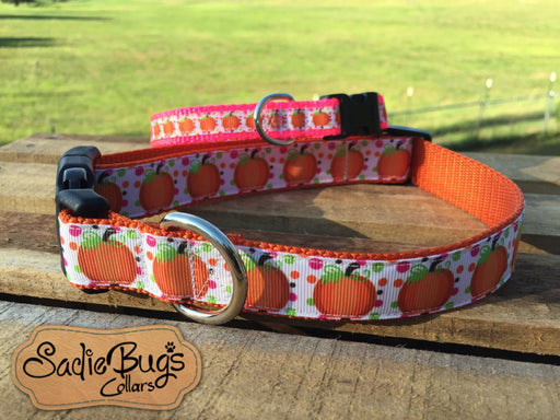 Pumpkin dog collar - Halloween2
