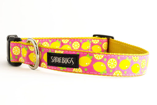 Lemon dog collar, Pink and yellow