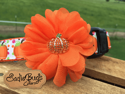 Pumpkin Flower - Flower Dog Collar Attachment