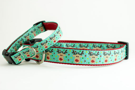 Reindeer Dog Collar - turquoise and red
