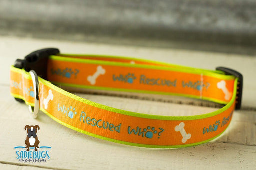 Who Rescued Who Dog Collar