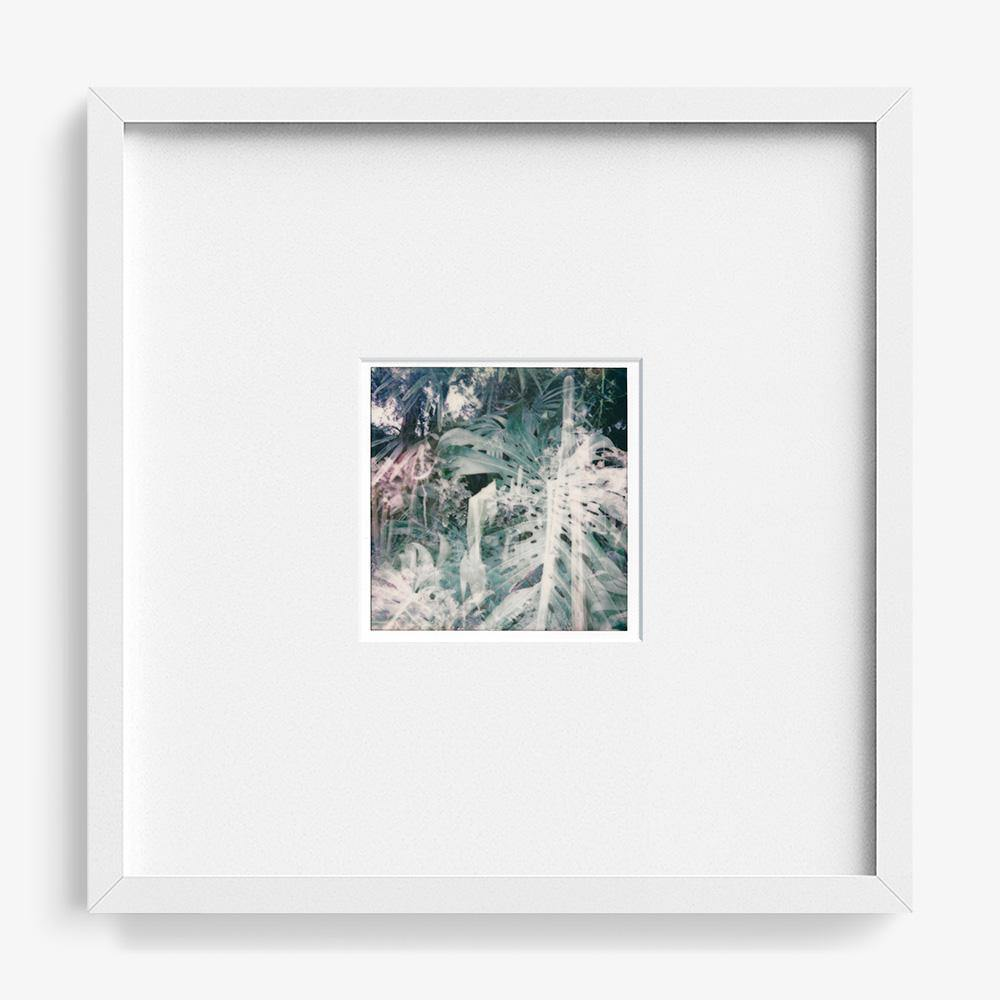 Untitled (Merge 1), Polaroid  by  Untitled (Merge 1) Tappan
