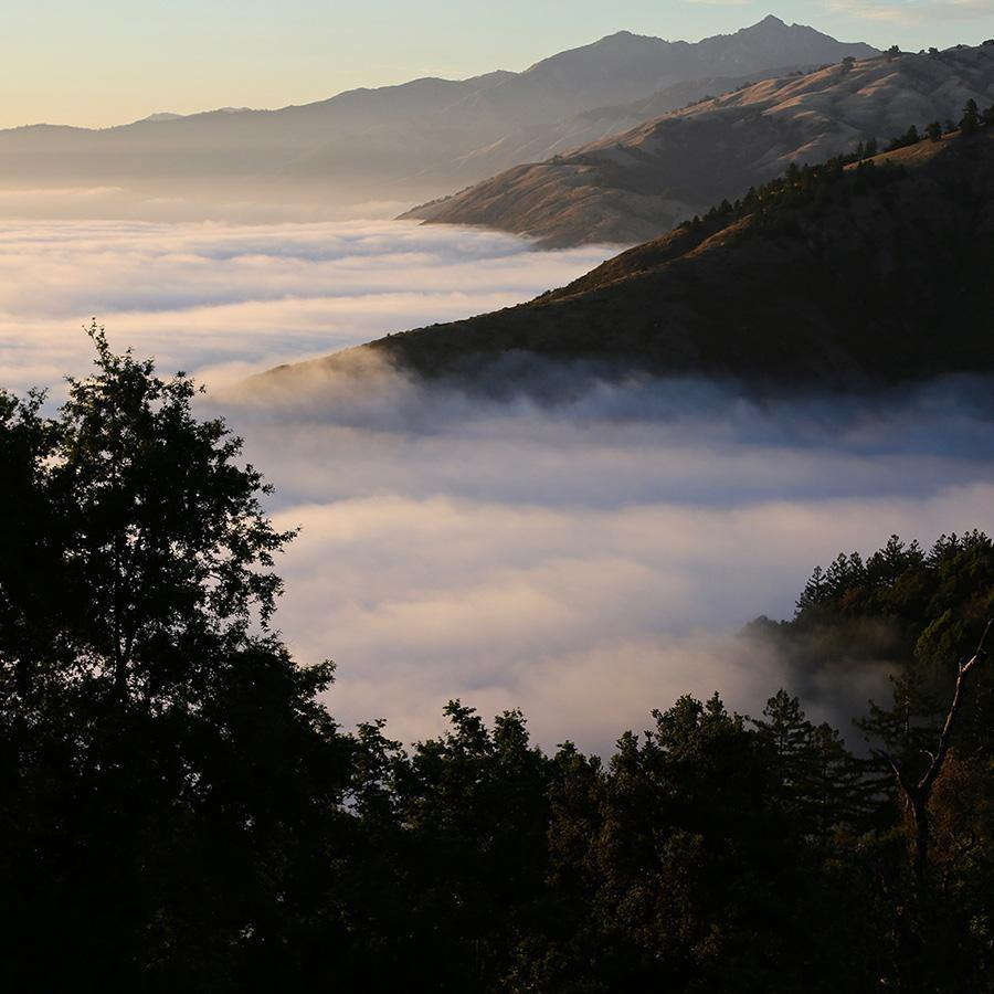 Above the Clouds (Big Sur)