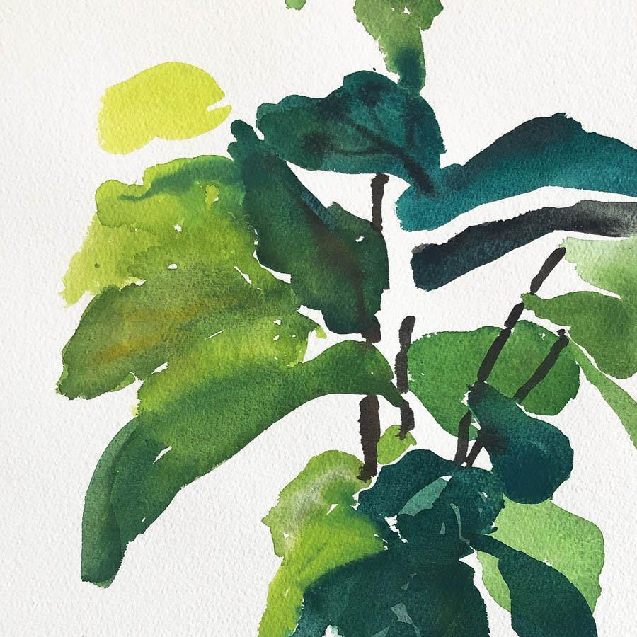 Fiddle-Leaf Fig Tree, Original Work on Paper  by  Fiddle-Leaf Fig Tree Tappan