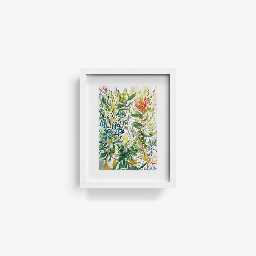 Protea Bush, Original Work on Paper  by  Protea Bush Tappan