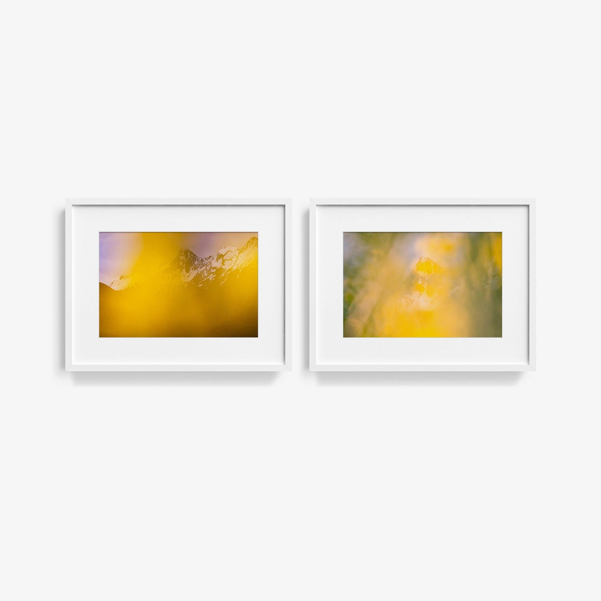 Thermal Explorer, Forgotten World Diptych I