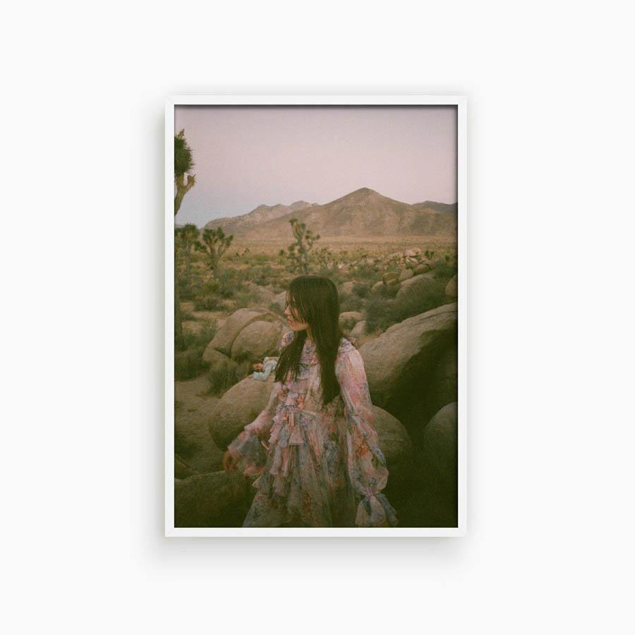 Untitled II (Joshua Tree)