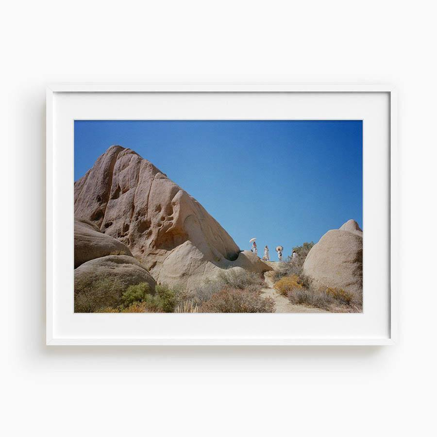 Untitled I (Joshua Tree), Photograph  by  Untitled I (Joshua Tree) Tappan