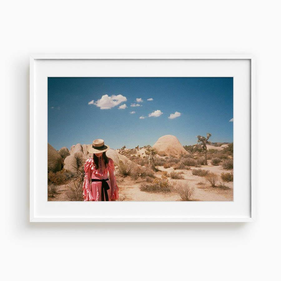 Untitled IV (Joshua Tree), Photograph  by  Untitled IV (Joshua Tree) Tappan