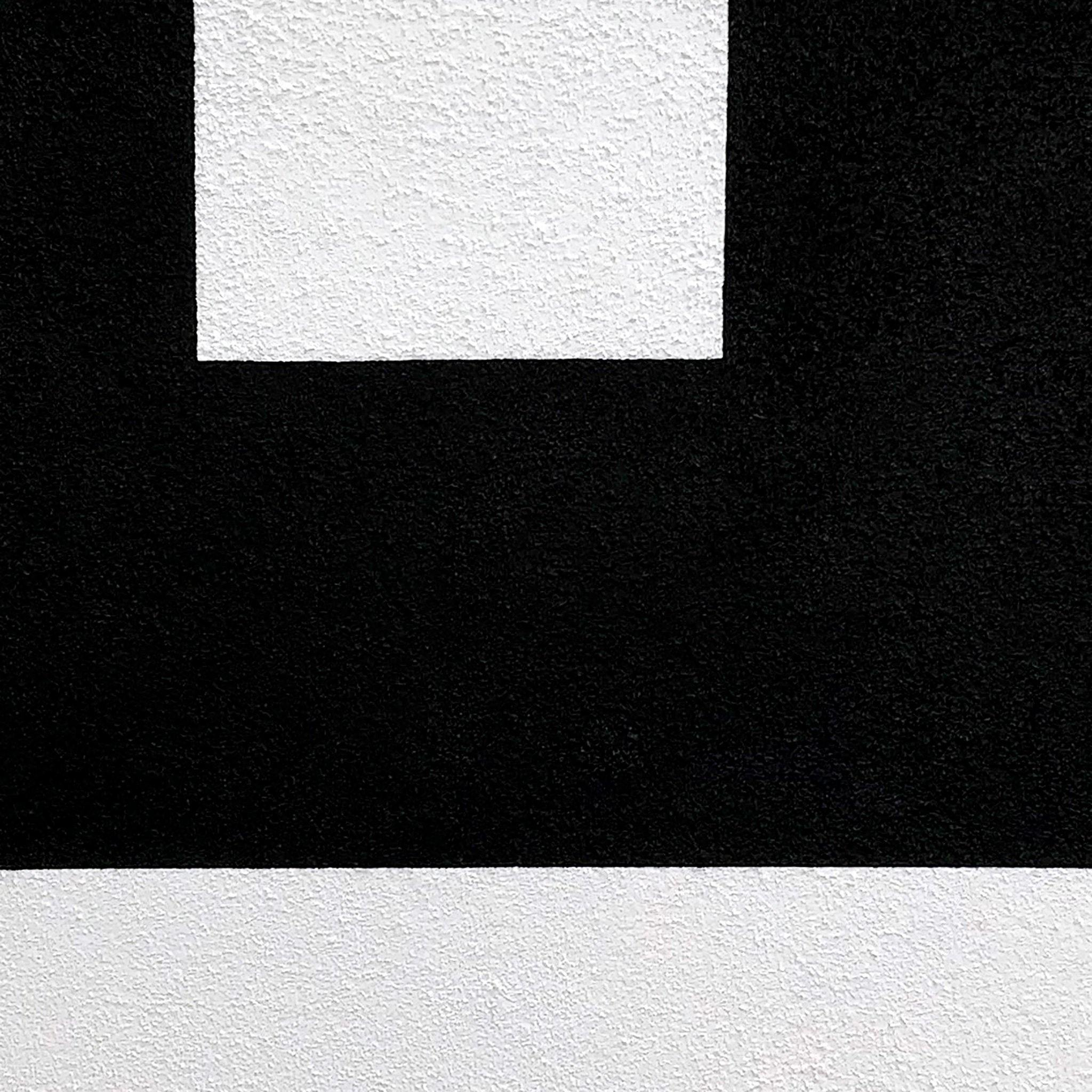Black on White III, Painting  by  Black on White III Tappan