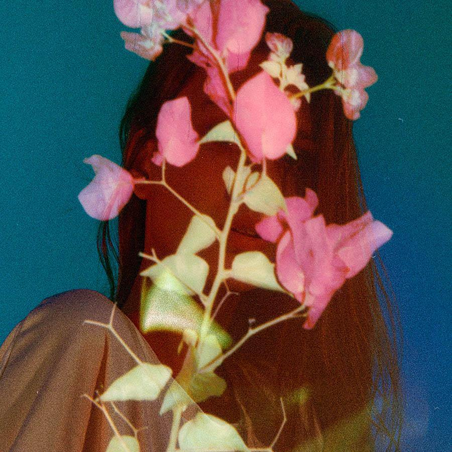 Bloom, Photography  by  Bloom Tappan
