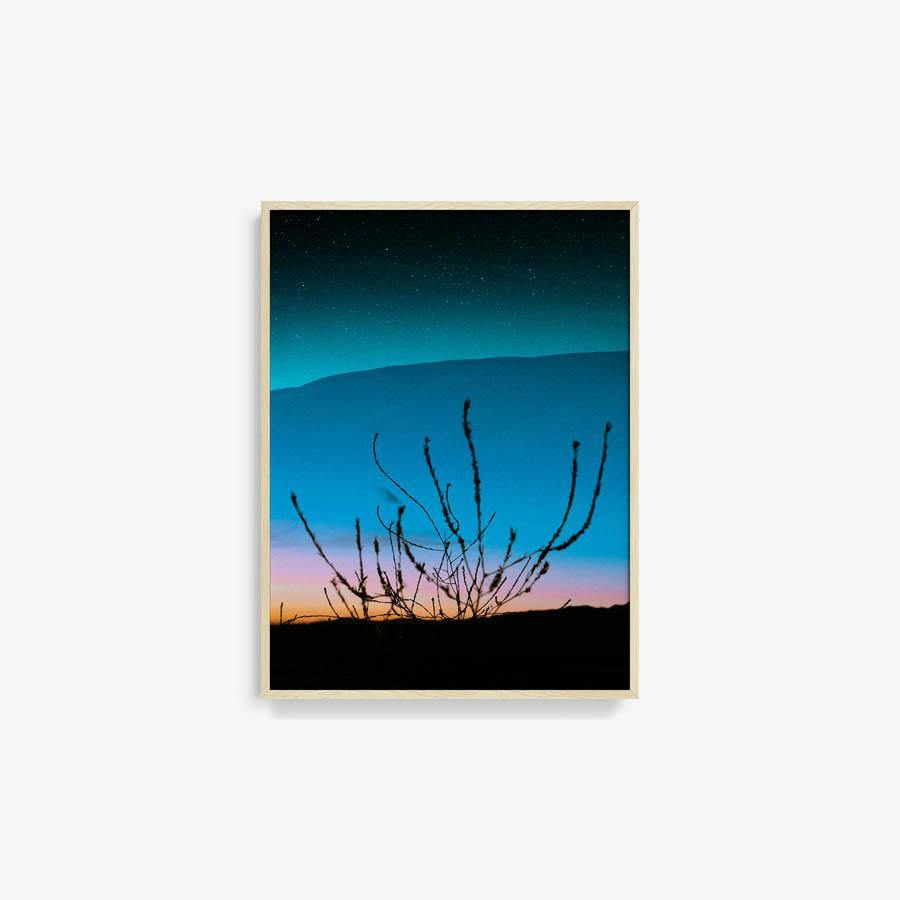 Untitled (Ojai 1), Photography  by  Untitled (Ojai 1) Tappan
