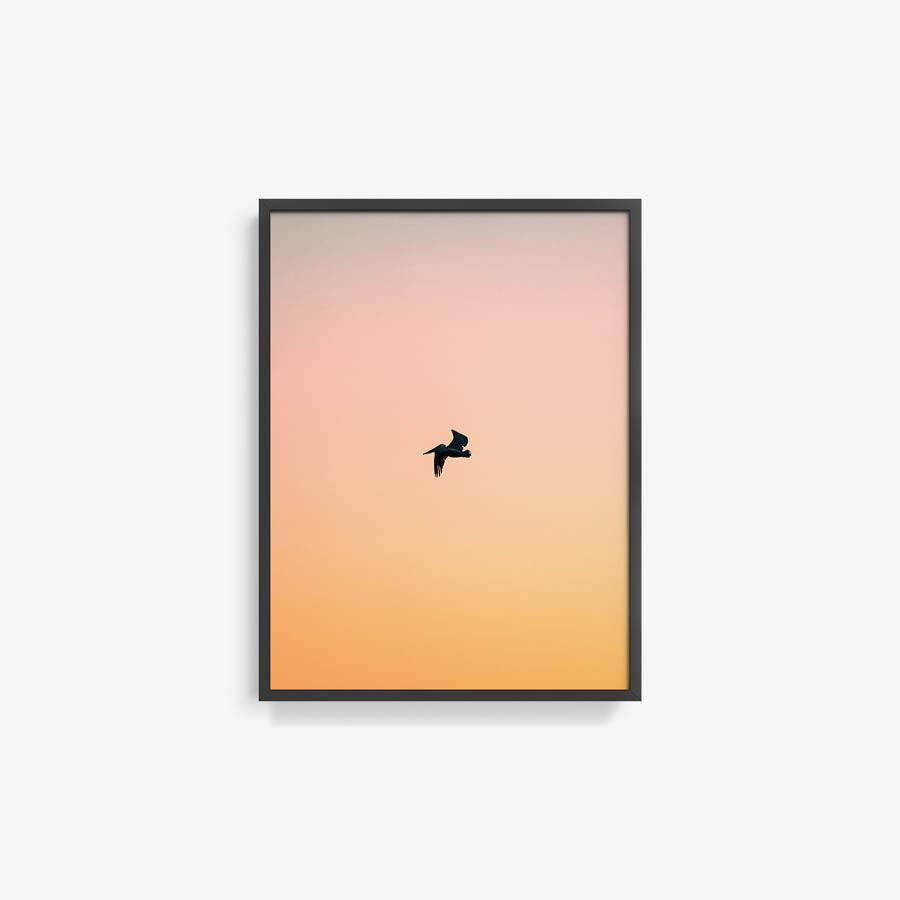 Untitled (Yellow Bird)