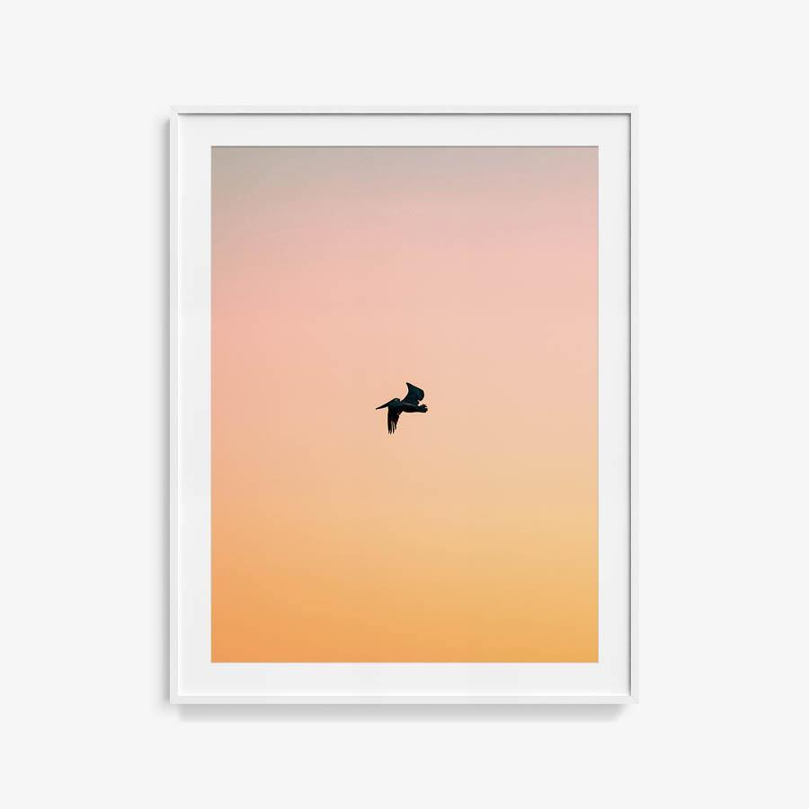 Untitled (Yellow Bird), Photograph  by  Untitled (Yellow Bird) Tappan