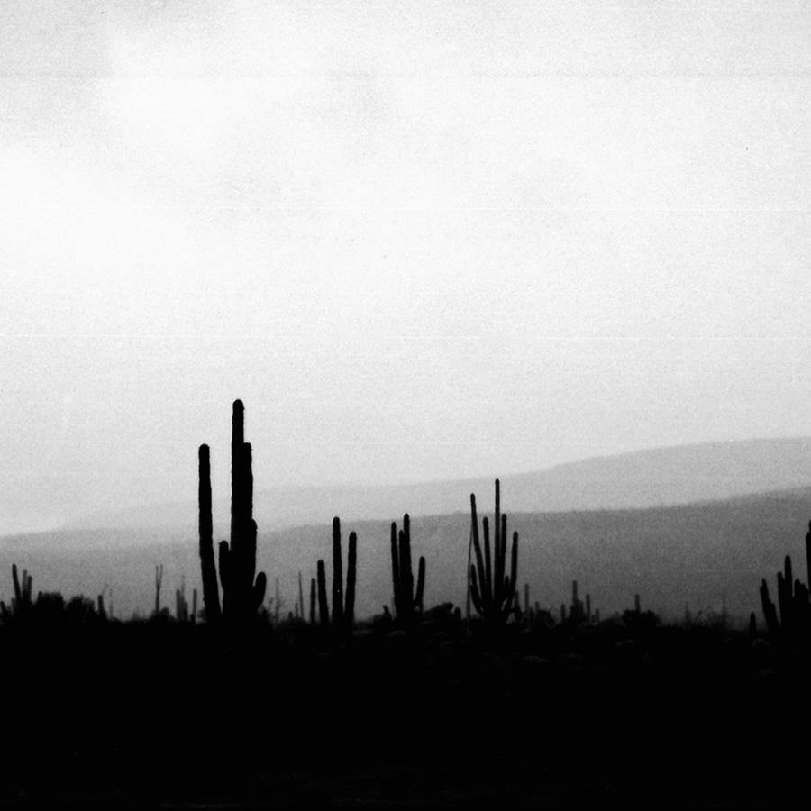 Driving South (Baja, Mexico)