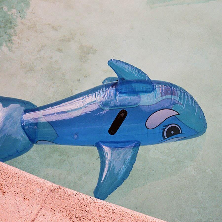 Whale in Pool