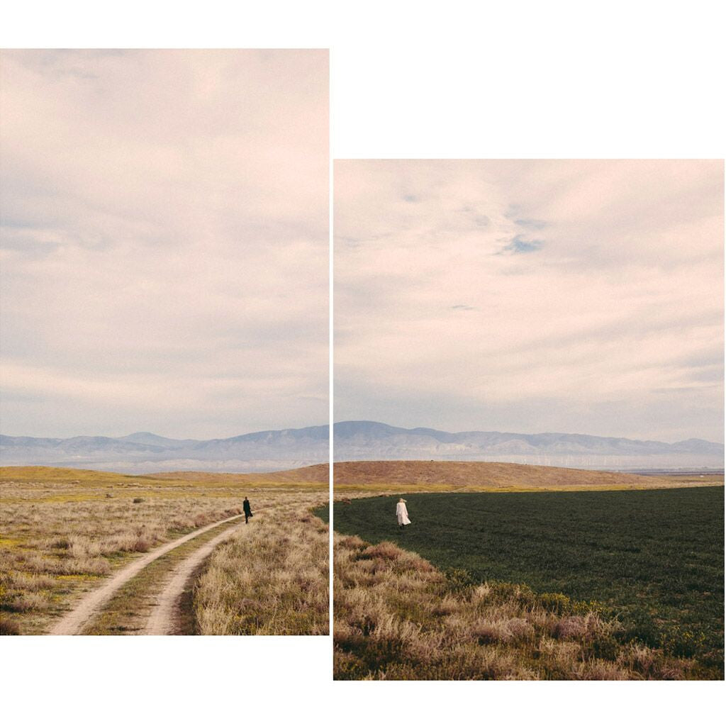 Together Apart (Diptych), Photograph  by  Together Apart (Diptych) Tappan