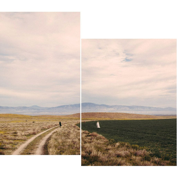 Together Apart (Diptych)