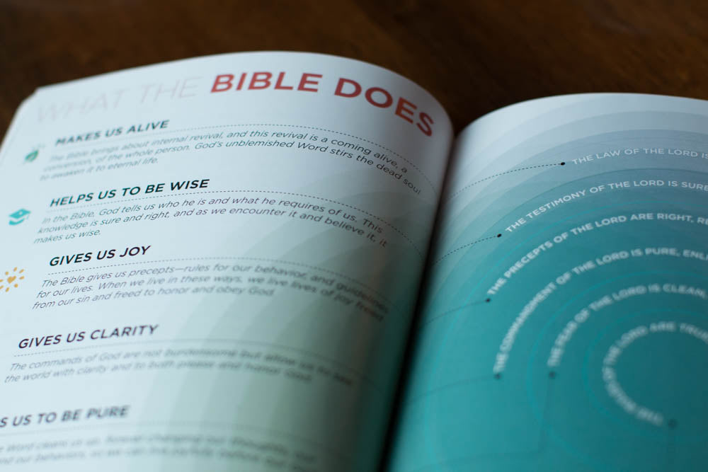 visual theology the book