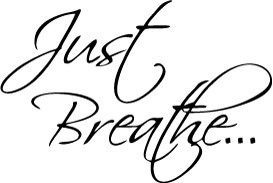 Just Breathe Vinyl Car Window Laptop Decal Sticker