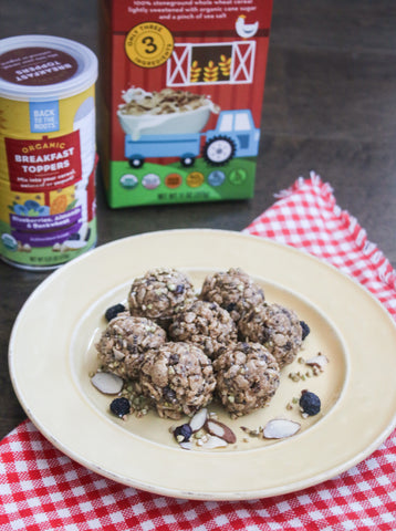 energy protein balls bites healthy snack breakfast toppers nut butter whole wheat cereal