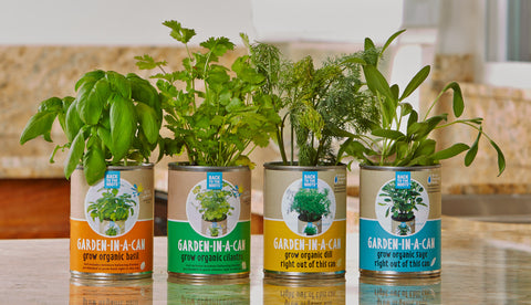 Eat Fresh, Healthy Food With Your Own Herb Garden Kit