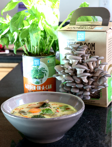 thai soup vegetable basil mushroom farm garden in a can recipe