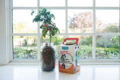 The Urban Homesteader Gift Set – Full Indoor Garden + Aquaponics Kit - Back to the Roots