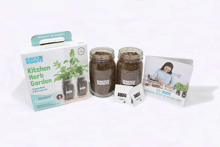 Kitchen Herb Garden by Ayesha Curry (Jar 2 Pack) - Organic Basil & Mint