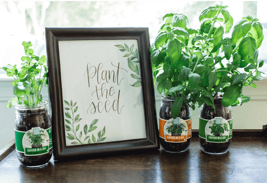 The Mason Jar Gift Set