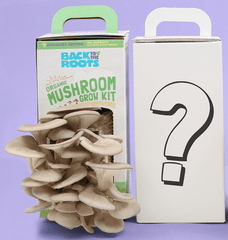 Mushroom Variety 2-Pack: Limited-Time Mystery Edition!