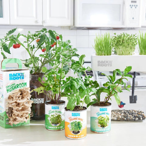 The Urban Homesteader Gift Set – Full Indoor Garden + Aquaponics Kit