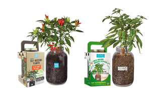 Pepper 2-Pack Self-Watering Planters