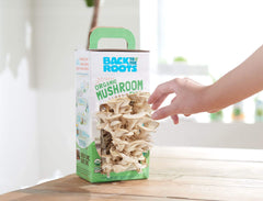 Organic Mushroom Growing Kit - Back to the Roots