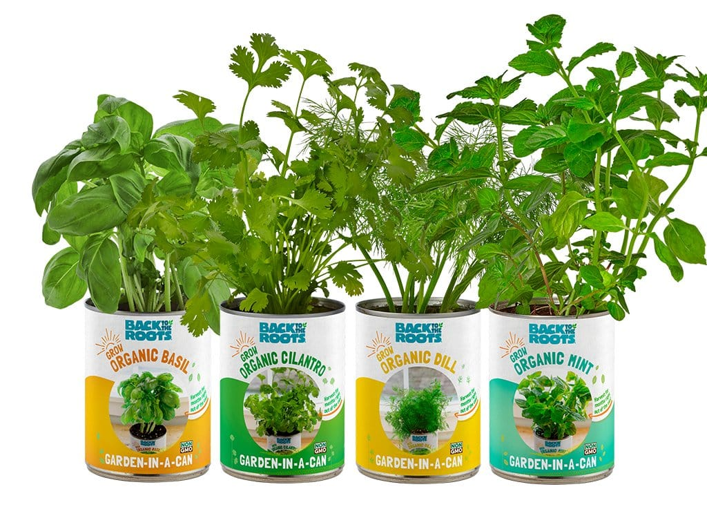 The Healthiest Indoor Herb Garden Kit Garden In A Can