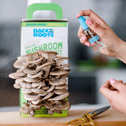 Organic Mushroom Grow Kit, Bulk 4 Pack - Save 20%