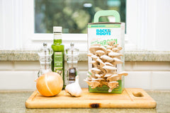 Organic Mushroom Grow Kit - Back to the Roots