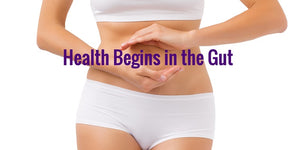 Health Begins in the Gut, DIgestion, GI, Gastrointestinal