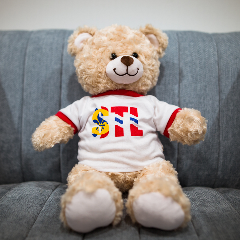 Build-A-Bear STL Flag Bear