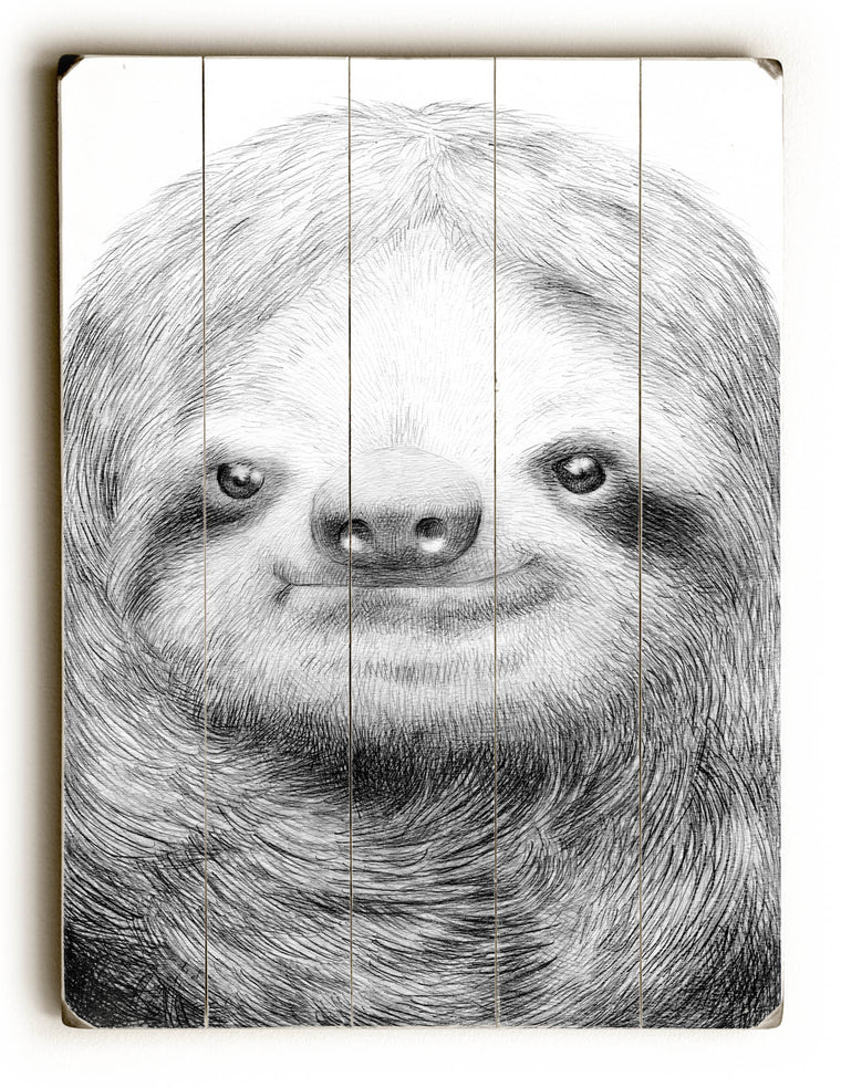 Sloth by Eric Fan